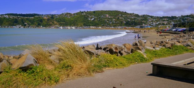 Lyall Bay Beach, Wellington, NZ,  January 2012.
